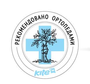 Купить школьные рюкзаки Кайт Киев